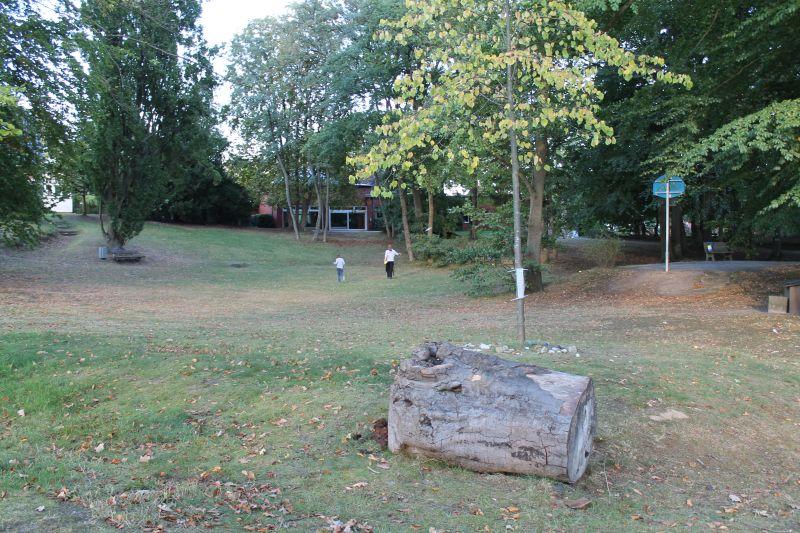 Pastorpark mit Blickrichtung Gemeindezentrum
