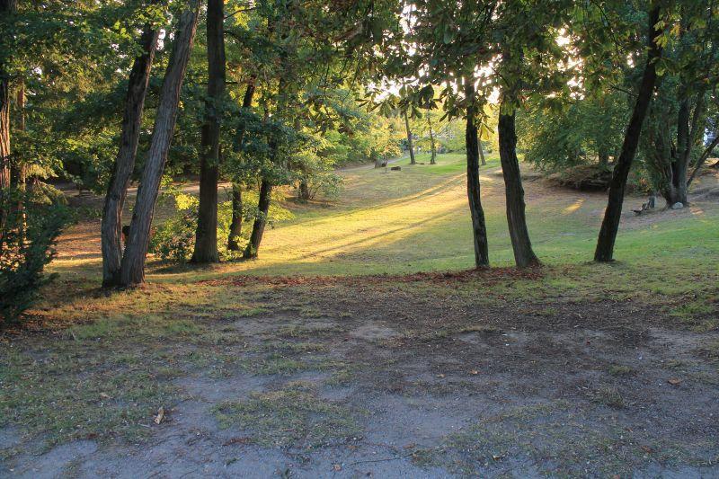 Blick auf den Pastorpark (Außengelände)